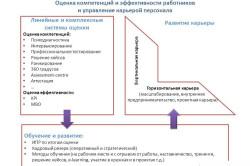 Оценка компетенций и эффективности работников и управление карьерой персонала