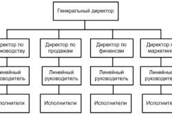Функциональная организационная структура управления