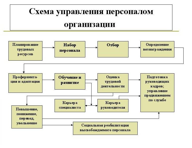 Управление персоналом схемы фото