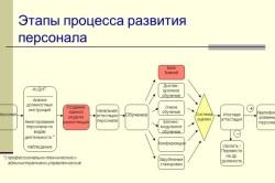 Этапы процесса развития персонала