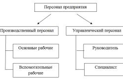 Классификация персонала