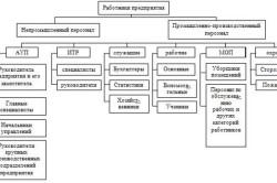 Классификация персонала на предприятии