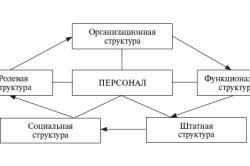 Многообразие структур персонала