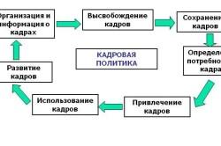 Цели кадровой политики организации
