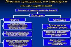 Структура персонала