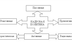 Виды кадровой политики организации