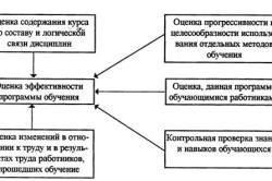 Оценка эффективности обучения сотрудников организации