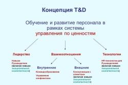 Обучение и развитие персонала в рамках системы управления по ценностям