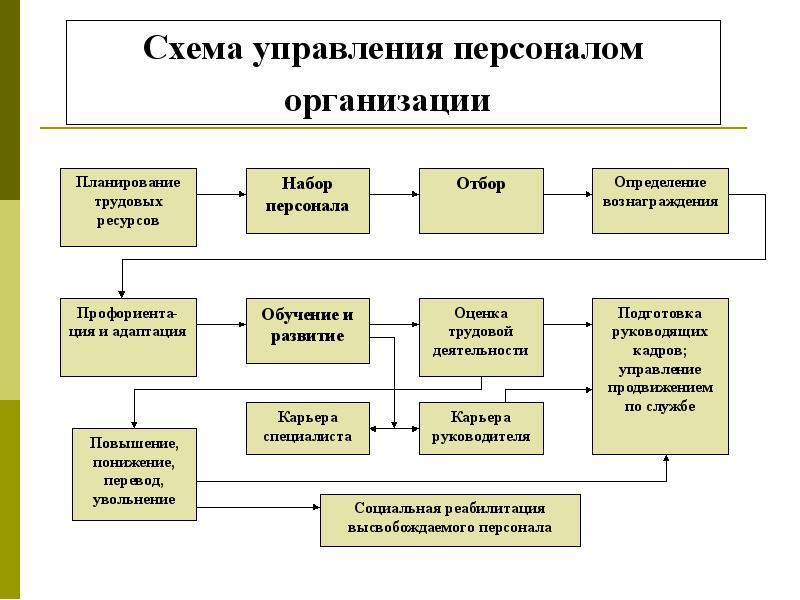 Персонал предприятия схемы