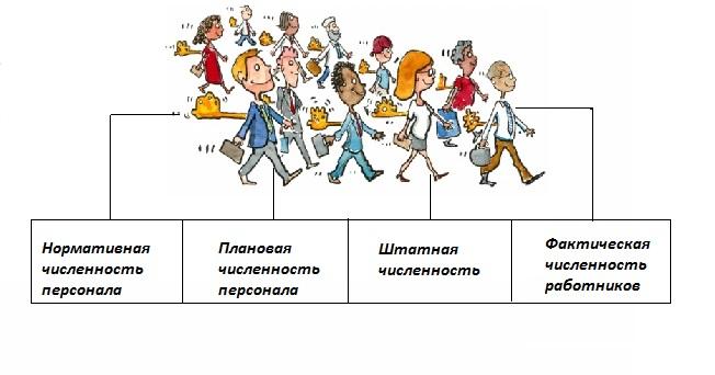 Работников 27. предприятия шпаргалка планирование численности