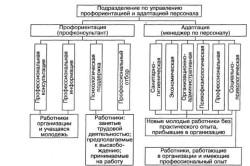 Подразделения по управлению профориентацией и адаптацией персонала
