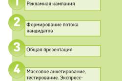 5 этапов подбора персонала
