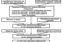 Качественные характеристики персонала в организации