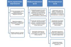 Цели проведения оценки проектного персонала