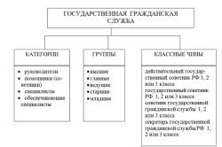 Классификация государственных служащих
