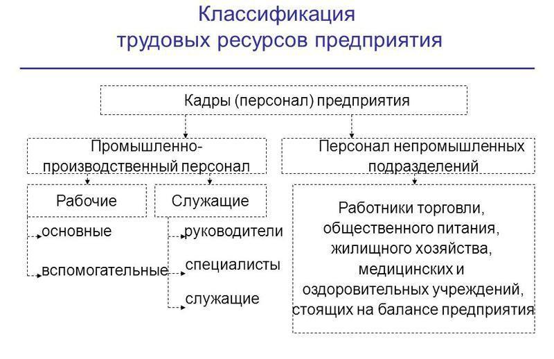 Персонал предприятия и его классификация экономика