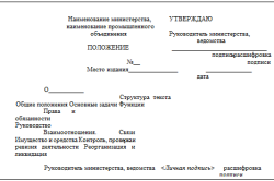 Типовая структура положения