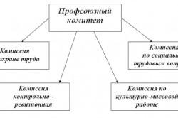 Структура профсоюзной организации