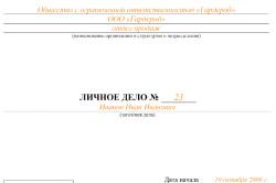 Изображение - Лицевые счета сотрудников по заработной плате Obrazec-oblozhki-lichnogo-dela-250x166